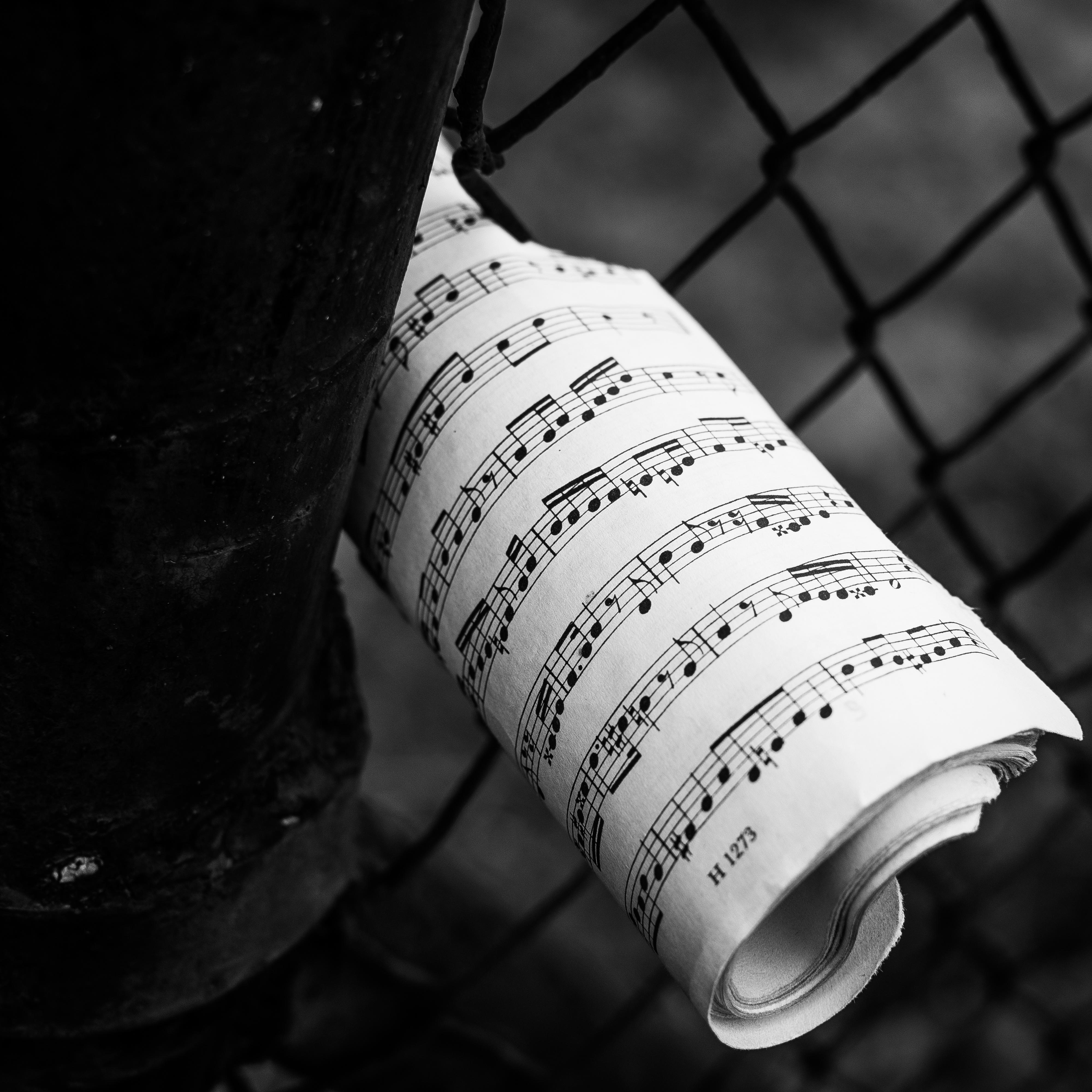Lezioni-concerto nel carcere di Viterbo il 9 novembre, un messaggio di libertà e di riscatto