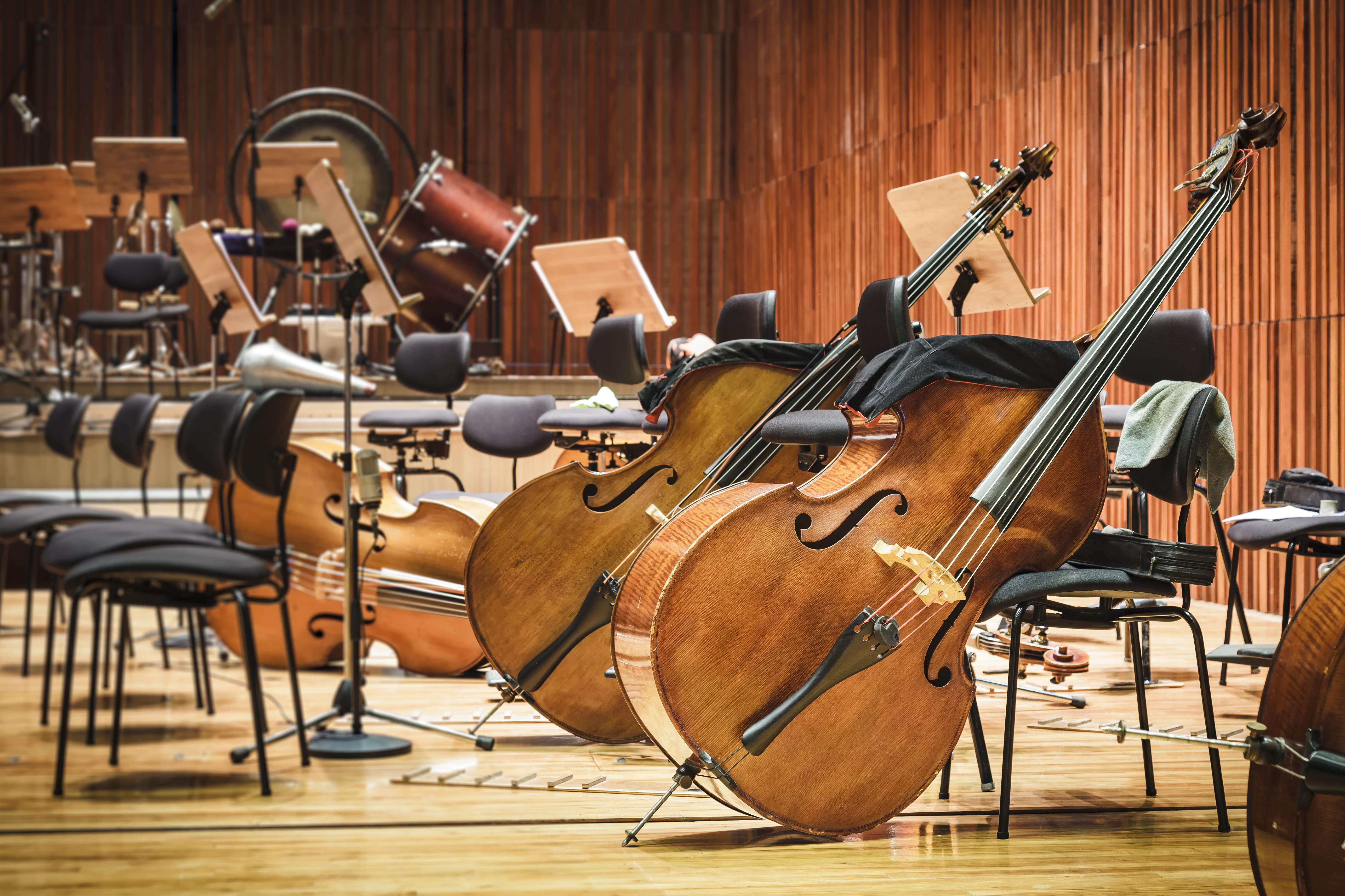 Volete acquistare uno strumento, ma non sapete da dove iniziare? Seguite la nostra guida su tutto ciò che c'è da sapere sull'acquisto di strumenti musicali.